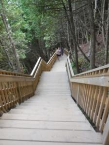 207 steps