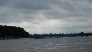 Wingdam on MS River