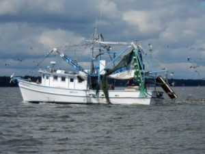 Shrimper on Mobile Bay