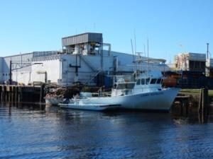 PSJ Seafood Processing