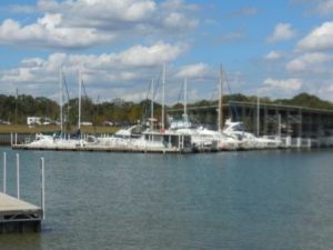 Kingfisher Marina