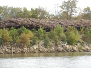 Logging operation near mm 88