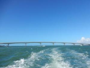 Ringling Cswy Bridge