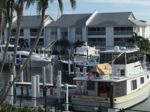 Palm Island Marina