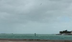KW Harbor - 40 kt day