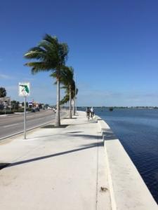 Bike & Pedestrian path