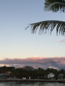 Moon rising in the east