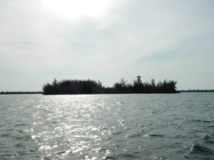 Morning on ICW north of Ft. Pierce