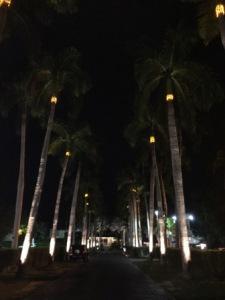 CRYC entrance at night