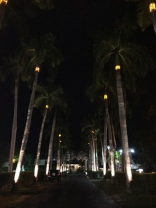 CRYC entrance at night