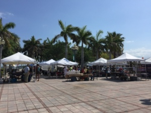 Wed farmer's market
