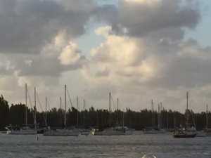 Morning in the Vero Bch mooring field