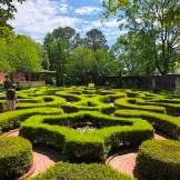 Gardens at Tryon Palace