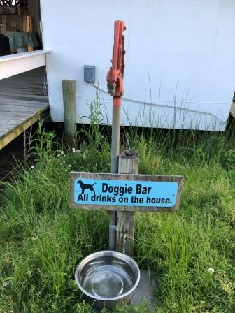 Doggie bar at Olverson's