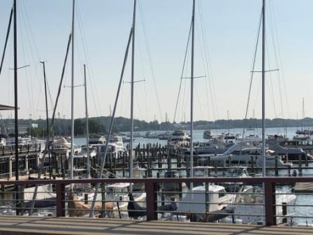 Annapolis Yacht Basin and Moorings
