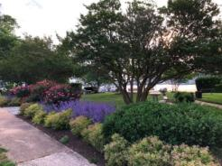 Flowers and landscaping at Watergate