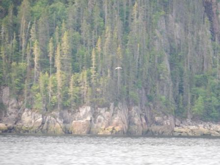 Western cliffs on the Saguenay River