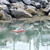 Remote control boats