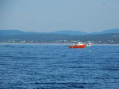Fishing boats on Malbaie