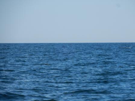 Bay of Chaleur bumpy