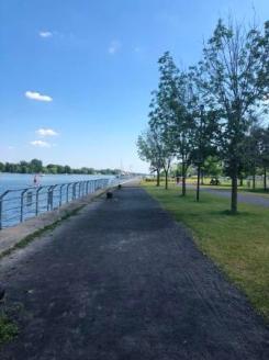 Park and path near marina
