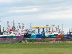 Fishing boats - pick your color