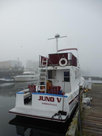 """""""Juno V"""""""