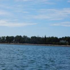 Greening Island