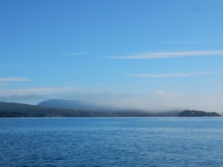 Fog over MDI