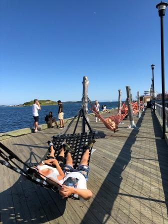 Hammocks on Harbourwalk