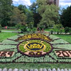 at the Public Gardens