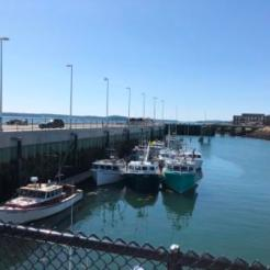 Inside breakwater wharf - commercial boats only
