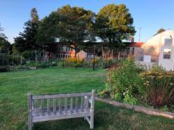 NE Harbor town garden