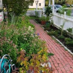 Gardens at Arborvine