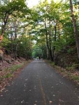 Bar Harbor Half Marathon - carriage trail