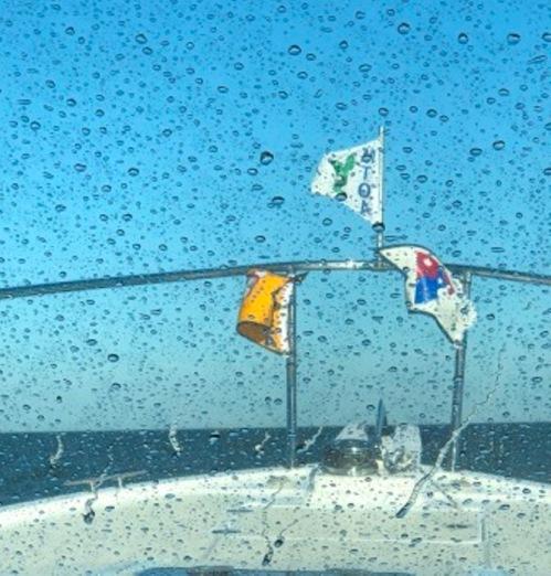 Rough seas on Delaware Bay