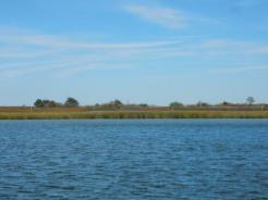 Poquoson Flats-Plum Tree Island National Wildlife Refuge