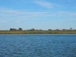 Poquoson Flats-Plum Tree Island National Wildlife Refuge