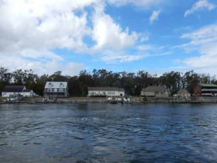 Homes on Adams Creek