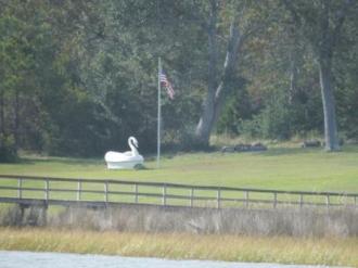 Swan Statue near Surf City