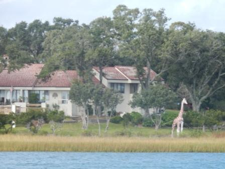 House with Giraffe