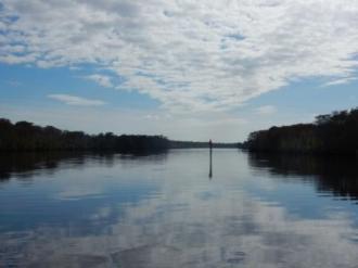 Beautiful Wacamaw River