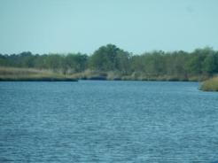 Low Country ICW
